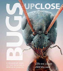 Bugs Up Close : A Magnified Look at the Incredible World of Insects