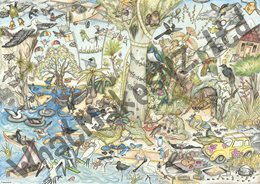 What Makes? Wildlife Wicked: 500 piece puzzle