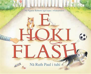 E Hoki Flash (Go Home, Flash! Maori Edition)