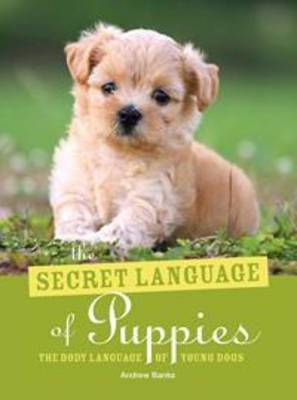 The Secret Language of Puppies: The Body Language of Young Dogs