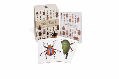 A Box of Beetles: 100 Postcards of the Most Striking Breeds