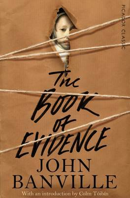 Book of Evidence: Picador Classic
