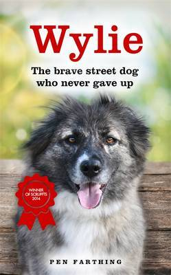 Wylie: The Dog That Never Gave Up