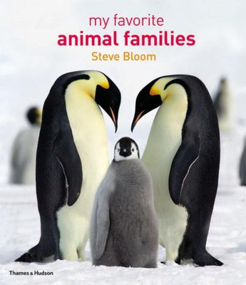 My Favourite Animal Families