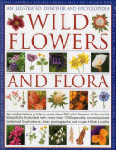 An Illustrated Identifier and Encyclopedia: Wild Flowers and Flora