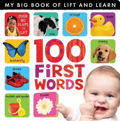 100 First Words (My Big Book of Lift and Learn)