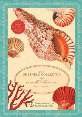 The Seashell Collector: A Keepsake Box for Your Treasures from the Sea