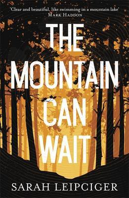 The Mountain Can Wait