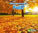 What Can You See in Fall? (Acorn Seasons)
