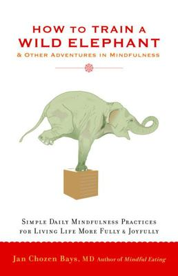 How to Train A Wild Elephant: And Other Adventures in Mindfulness