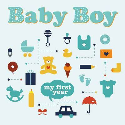 Baby Boy: My First Year