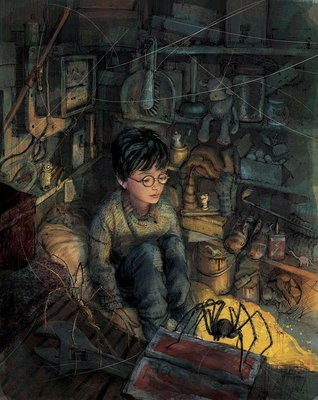 Harry Potter and the Philosopher's Stone (Illustrated Edition HB #1)