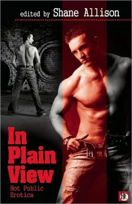 In Plain View: Gay Public Erotica