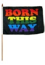 "Flag – Born this Way on Stick 12"" X 18"""