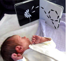 Mesmerised: Captivating Pictures for Babies and Newborns