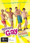 Another Gay Sequel Dvd