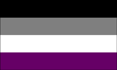 Flag - Asexual Pride 3ft x 5ft