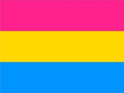 Flag – Pansexual 3ft x 5ft