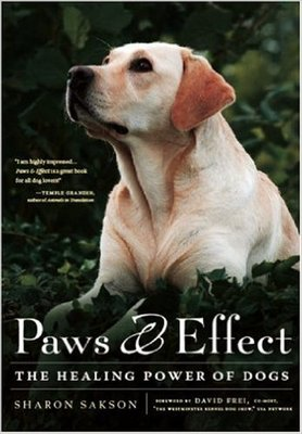 Paws & Effect: The Healing Power of Dogs