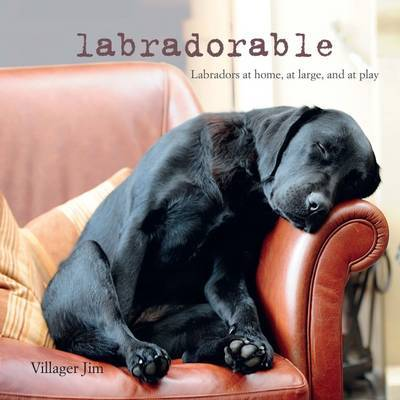 Labradorable: Labradors at Home, at Play, and at Rest