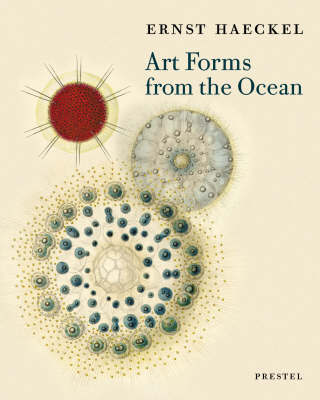 Art Forms from the Ocean - The Radiolarian Prints of Ernst Haeckel