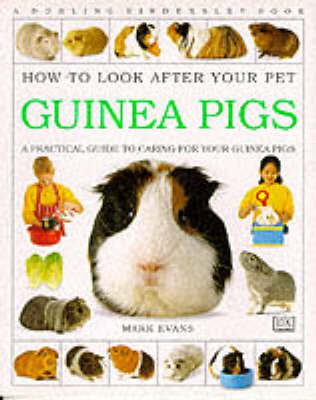 How to Look After Your Pet: Guinea Pigs