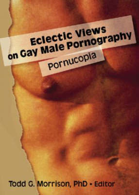 Eclectic Views on Gay Male Pornography: