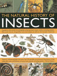 The Natural History of Insects: A Guide to the World of Arthropods, Covering Many Insects Orders, Including Beetles, Flies, Stick Insects, Dragonflies, Ants and Wasps, as Well as Microscopic Creatures