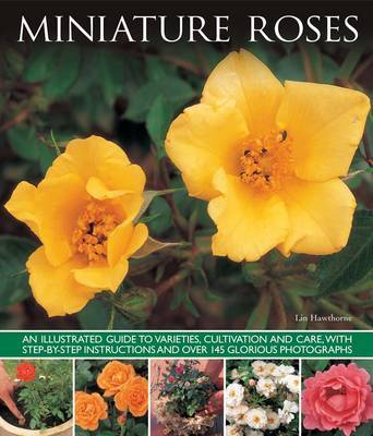 Miniature Roses: An Illustrated Guide to Varieties, Cultivation and Care, with Step-by-step Instructions and Over 145 Glorious Photographs
