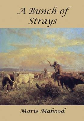 A Bunch of StraysA Novel of the Outback