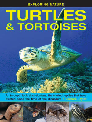 Exploring Nature: Turtles & Tortoises: An in-Depth Look at Chelonians, the Shelled Reptiles That Have Existed Since the Time of Dinosaurs