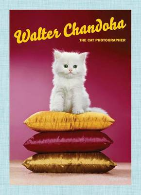 Walter Chandoha - The Cat Photographer