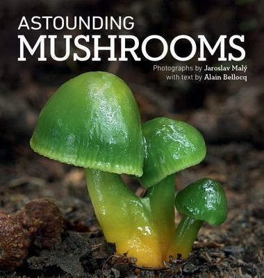Astounding Mushrooms (HB)