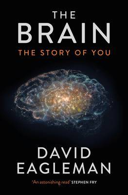Brain : The Story of You