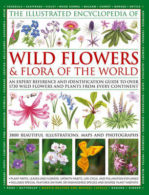 Illustrated Encyclopedia of Wild Flowers