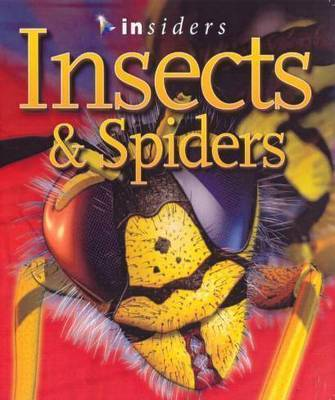 Insects and Spiders (Insiders)