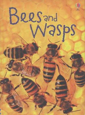 Bees and Wasps (Usborne Beginners)