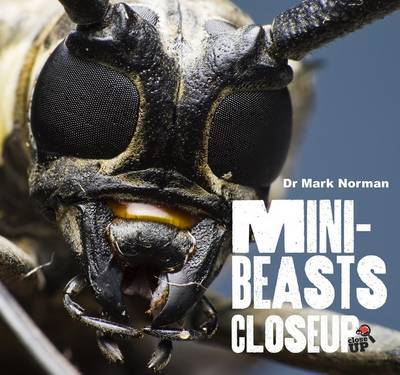 Minibeasts (Close Up)