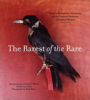 Rarest of the Rare: The Stories Behind the Harvard Museum of Natural History