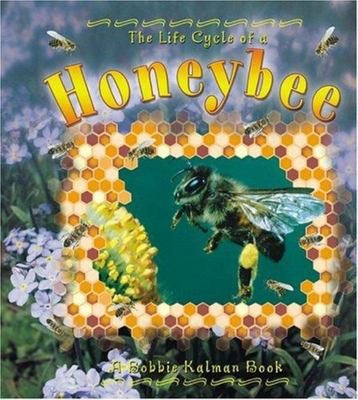 The Life Cycle of a Honeybee (Life Cycle Series)