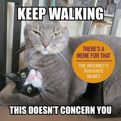 Keep Walking, This Doesn't Concern You: The Internet's Favourite Memes