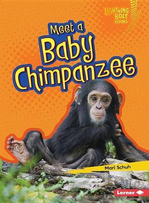 Baby Chimpanzee (Meet a... )