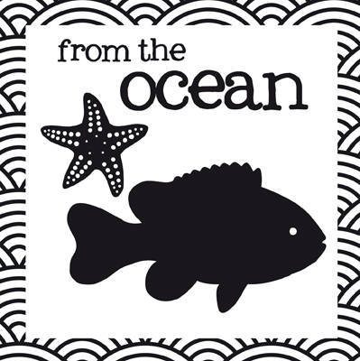 From the Ocean - Crinkly Book of Aussie Animals