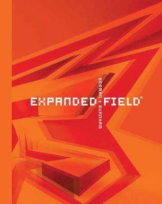 Expanded Field - Installation Architecture Beyond Art