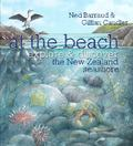 At the Beach: Explore & Discover the New Zealand Seashore (PB)