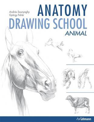 Anatomy Drawing School: Animal Anatomy