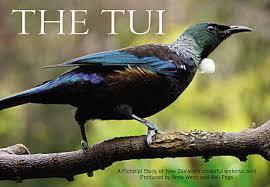 The Tui (A5 Version)
