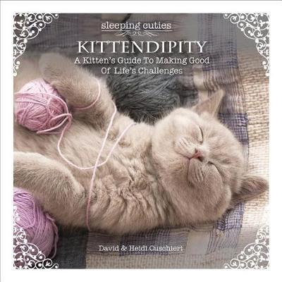 Kittendipity: A Kitten's Guide to Making Good of Life's Challenges