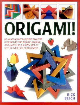 Origami!: 80 Amazing Paperfolding Projects, Designed by the World's Leading Origamists, and Shown Step by Step in Over 1500 Photographs