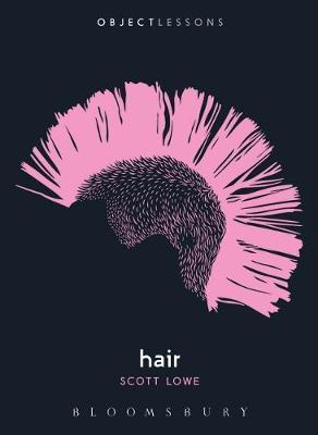 Hair (Object Lessons)